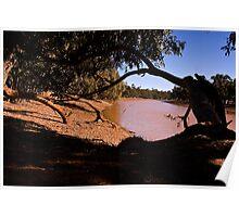 Kidman First Waterhole Poster