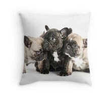 Frenchie Pals Throw Pillow