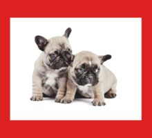 Frenchie Puppy Pals Kids Clothes