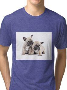 Frenchie Puppy Pals Tri-blend T-Shirt