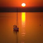 Sunrise - Corio Bay by Hans Kawitzki