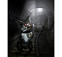 Clockwork White Rabbit Photographic Print