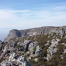Looking out over Table Mountain, Cape Town South Africa by heartyart