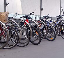 Bike rack - Melbourne Museum. by boffin