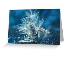 """Fairy Lights"" Greeting Card"