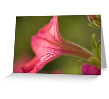 Flower Essence Greeting Card
