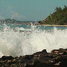 Crashing Waves by Robert Abraham