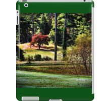 The Little Red Maple iPad Case/Skin