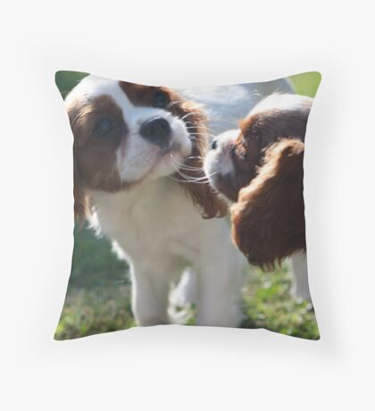 Curious pups Throw Pillow