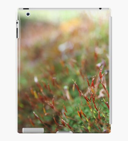 Moss with red stems - 2011 iPad Case/Skin