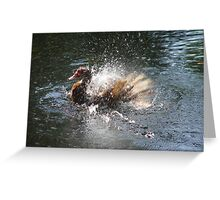 SPLISH, SPLASH, I WAS TAKIN' A BATH... Greeting Card
