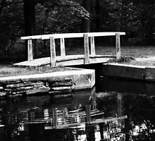 Point Pleasant Park - Halifax by Sami Wong