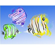 3 Fish Photographic Print