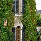 Masion de Rochefort en Terre by Buckwhite