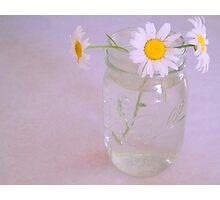 Daisy Do Photographic Print