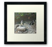 X-Factor Penguin Framed Print
