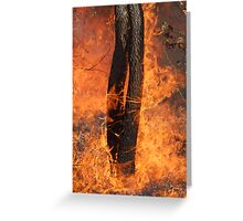 Fingers Of Fire Greeting Card
