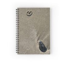 Sand heart and mussel shell - 2009 Spiral Notebook