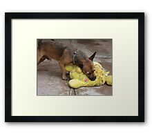 In my dreams...... Framed Print