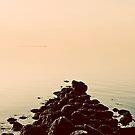 Sound Awakening III by Tim Mannle