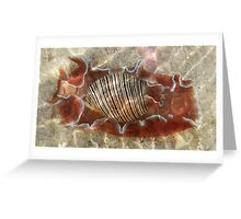 Spanish Ripples Greeting Card