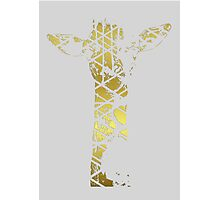 Golden Giraffe Photographic Print