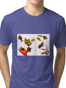 Autumn Magic Tri-blend T-Shirt