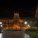 The St Marys Cathedral, Sydney 2010 by Malcolm Katon