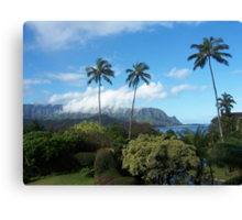 Palms at Hanalei Canvas Print