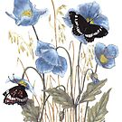 Blue-Butterfly Day by Constance Widen