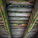 Under the Footbridge by MarjorieB