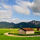 Countryside. Germany. 08. by Daidalos