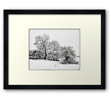 A pencil sketch from the snow gods Framed Print