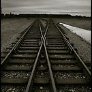Auschwitz Birkenau - Railway (towards the &#x27;Ramp&#x27;) by Peter Harpley