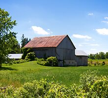 Rural Ontario Scenery by RandiScott