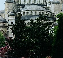detail of Blue Mosque,Istanbul by califpoppy1621