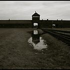 Auschwitz Birkenau - Death Gate 3 by Peter Harpley
