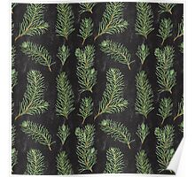 Watercolor pine branches pattern on black background Poster