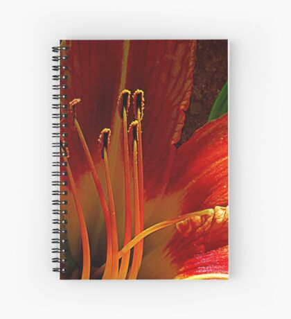 Charmingly Ruddy Rufescent Spiral Notebook