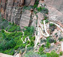 Downhill Switchbacks from Angels Landing  by Robert Meyers-Lussier