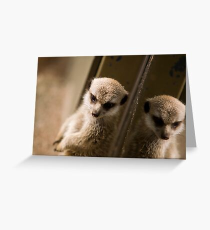 Meerkat Refection Greeting Card