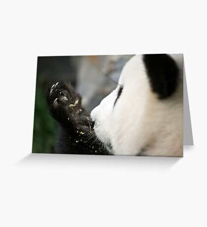Funi - Adelaide Zoo Greeting Card