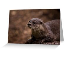 Otter Greeting Card