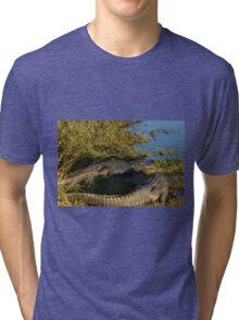 A Pair of Amigators Tri-blend T-Shirt