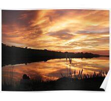 Sunset on Bodega Bay Harbor Poster