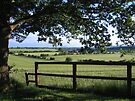 Framed Countryside by hjaynefoster
