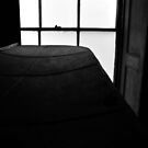 a window light study by ragman