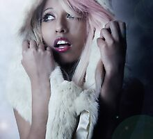Arctic Frost by Rebecca Tun