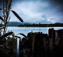 Blue Dew by Shaynelee