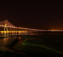 Follow the Lights by Nuno Pires